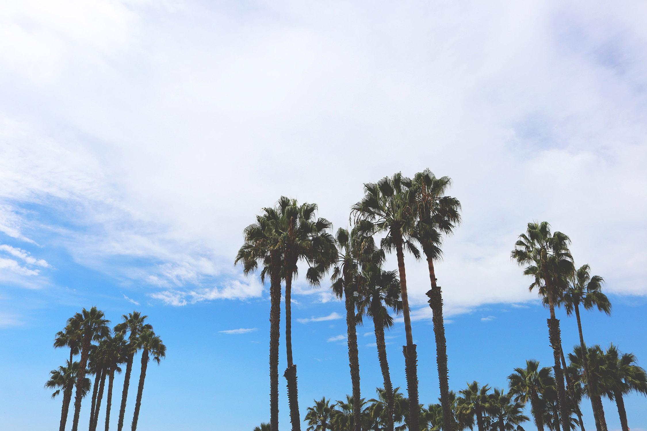 AMERICA PT. 1 – LOS ANGELES